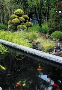 Садовые рыбки